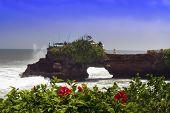 foto of tanah  - Tanah Lot and Hibiscus Bali - JPG