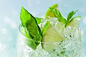 image of mojito  - Mojito lime pieces leaves of mint with ice and rum