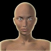 High resolution concept or conceptual 3D wireframe human female head isolated on black background