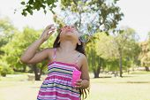 Young little girl blowing soap bubbles at the park