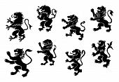 pic of lion  - Royal heraldic black lions set isolated on white - JPG