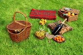 picture of grape  - Picnic setting with Champagne wine grape glasses grape and picnic hamper picnic basket and blanket - JPG