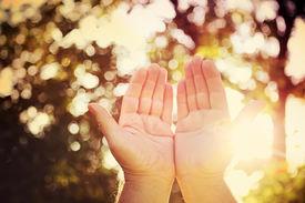 image of pray  - Praying hands - JPG