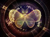 pic of metaphysical  - Unfolding Symmetry series - JPG