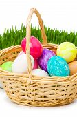 stock photo of easter-eggs  - Eggs in the basket and grass isolated on white - JPG