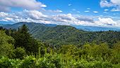 picture of gatlinburg  - Beautiful sunny spring day at the Newfound Gap Overlook - JPG