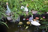 picture of duck pond  - Artificial pond with toy ducks in city park in Zelenogorsk outskirts of St - JPG