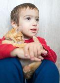 stock photo of kitty  - Portrait of child holding yellow kitty cat - JPG