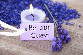 picture of purple white  - Purple Label With Candle Light And Lavender Blossoms With English Text Be Our Guest On Wooden Background With White Ribbon - JPG