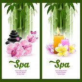 stock photo of frangipani  - Vector banners on spa theme with bamboo - JPG