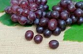 picture of sackcloth  - bunch of ripe grapes on sackcloth background - JPG
