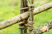 picture of wooden fence  - Traditional wooden fence made of spruce and juniper - JPG