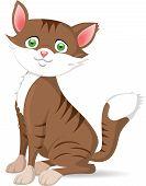 stock photo of domestic cat  - Happy domestic cat created in vector illustration - JPG