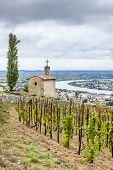 picture of chapels  - grand cru vineyard and Chapel of St - JPG