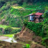stock photo of tilt  - Amazing tilt shift effect view of rice terraces fields and village houses in Ifugao province mountains - JPG