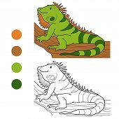 picture of color animal  - Game for children - JPG