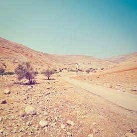 image of samaria  - Ruins in Sand Hills of Samaria Israel Retro Effect - JPG
