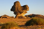 picture of scant  - Sandstone rock mushroom in the Acacus mountains LIbya - JPG