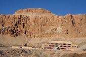 picture of skarabaeus  - ancient temple of hatschepsut at theben west - JPG