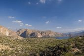 stock photo of snowbird  - canyon lake tonto national forest - JPG