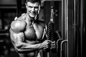 Handsome Model Young Man Training Arms In Gym poster