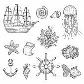 Nautical Elements. Ocean Fish Shells Boats Ships Knot Travel Marine Symbols Vector Hand Drawn Collec poster