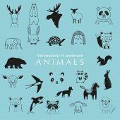 Hand Drawn Animals. Minimalistic Hand Drawn Animals. Animals Illustrations. poster