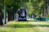 Blur, The Tram Goes On Rails In The Alley Of Trees. Eco-friendly Urban Public Transport. Urban Fores poster
