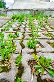 Perspective With Shallow Depth Of Field Of Old Cobblestone Eco-friendly Parking Pavement In City Par poster