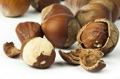 stock photo of hazelnut  - Closeup raw hazelnuts white isolated - JPG