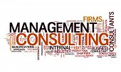 foto of text cloud  - An image of a management consulting text cloud - JPG