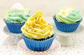 picture of torta  - Cupcakes decorated with butercream of some colors in blur background - JPG