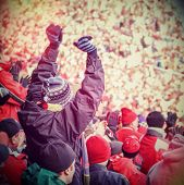 pic of bleachers  - Fan celebrating in the stands at an american football game - JPG