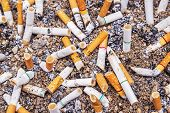 stock photo of discard  - Cigarette butts discarded in ashtray of sand background - JPG