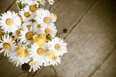 image of chamomile  - Beautiful tender bouquet of summer meadow flowers with wild chamomiles on wooden background - JPG