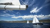 image of yacht  - Group yacht sailing - JPG