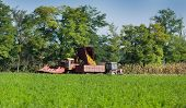 picture of tractor-trailer  - Corn harvester and tractor with trailer working on harvesting corn - JPG