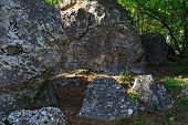 picture of coniferous forest  - huge gray stones in the coniferous forest - JPG