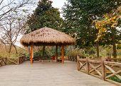 stock photo of gazebo  - Wooden pathway and traditional Chinese gazebo - JPG