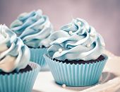 picture of dessert plate  - Blue Cupcakes on a plate - JPG
