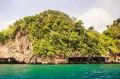foto of greenery  - cliffy island covered with greenery in azure sea water - JPG
