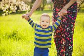 stock photo of children walking  - baby walking in green park holding hands of mother - JPG