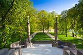 stock photo of legion  - Spring on Strelecky Island in Prague - JPG