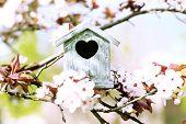 picture of nesting box  - Decorative nesting box on bright background - JPG