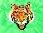 stock photo of tigers-eye  - Tiger anger geometric style - JPG