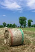 picture of hay bale  - A bale of hay in a field in the Italian countryside - JPG