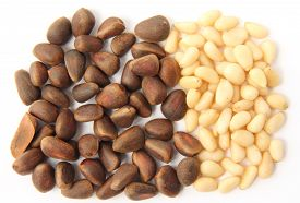 stock photo of pine nut  - Pine nuts  - JPG