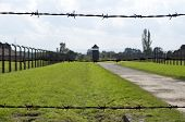 image of auschwitz  - Fence at Auschwitz concentration camp in Poland - JPG