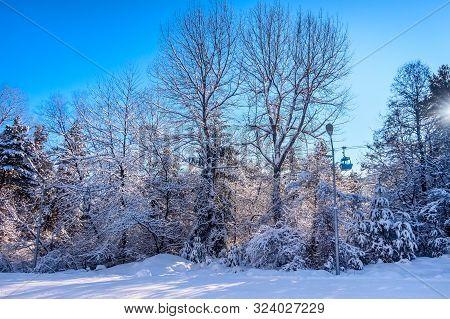 poster of Bansko Ski Resort Forest View With Ski Lift Gondola Cabin, Slope And Snow Trees, Bulgaria