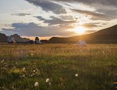 Beautiful Orange Sunrise In Landmannalaugar Mountain At Camp Site Area With White Flowers And Tents. poster